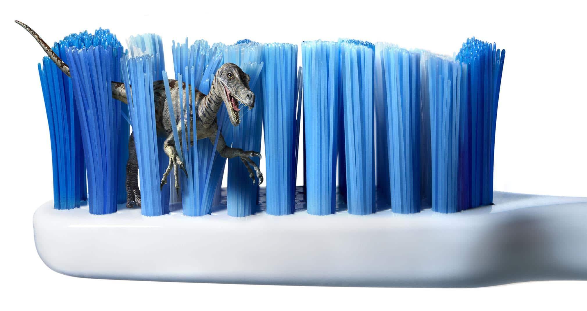 Cepillo dental ¿cuándo hay que cambiarlo?